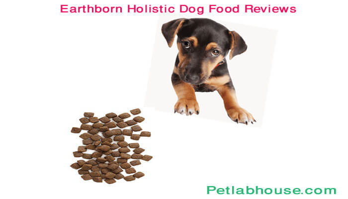 earthborn holistic dog food reviews
