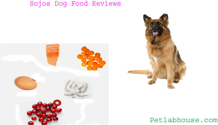 sojos dog food reviews