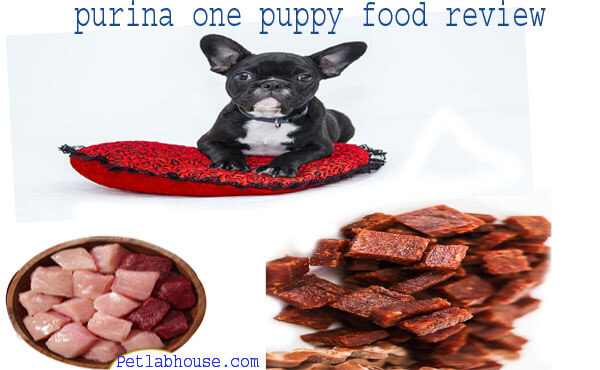 purina one puppy food review